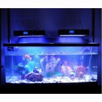 LED-Aquarium- und Wachstums-Lampen