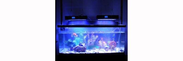 LED-Aquarium- und Wachstums-Lampen