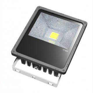 LED Floodlight  50W IP65 120° 1x50W Bridgelux COB Professional