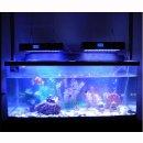 Aquarium Lampe LED 240W mit Zeit-und Programmsteuerung 99x3W multicolor 51 x 28 cm