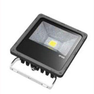 LED Floodlight  30W IP65 120° 1x30W Bridgelux COB Professional mit Bewegungsmelder
