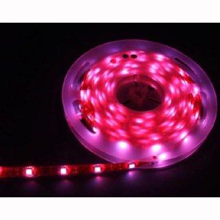 Flex Stripe RGB+W,WW 60 SMD5050 LEDs/m, 24V, 17,3W/m, lfm