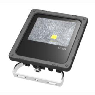 LED Floodlight  10W IP65 120° 1x10W RGB incl. Funk-FB