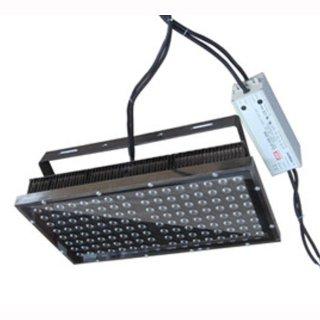 Projektleuchte Hallenleuchte Außenleuchte IP65 Cree 300W  15-120°