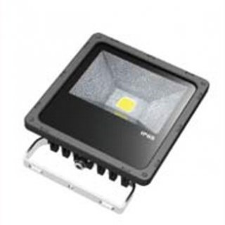LED Floodlight  30W RGB IP65 120° inkl. FB